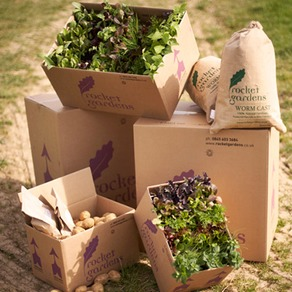 Organic Plants - Collections & Vouchers
