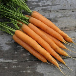 Carrots - All