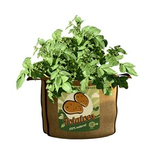Vintage Potato Planters (Pack of 2)
