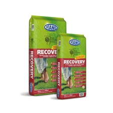 RHS Recovery 20kg - 598806