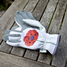 Chelsea RHS Collection Glove