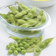 Bean Edamame (Soya) Seeds (Organic) - Summer Shell (40 seeds)