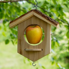 APPLE BIRD FEEDER BXAH