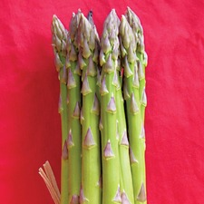 ASPARAGUS CROWNS, 30 Mixed Crowns (non organic) APMD