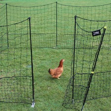 CHICKEN FENCING AND GATE 12m OMFN1
