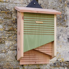 CONSERVATION BAT BOX BXCB