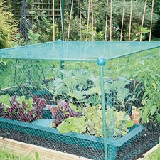 FRUIT CAGE Light Duty 0.65m x 1.25m x 1.25m FCLD3
