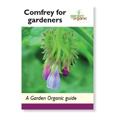 STEP BY STEP GUIDE Comfrey for Gardeners BKNR