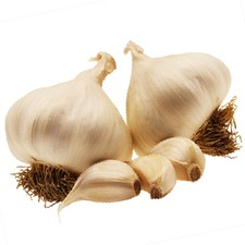 GARLIC Solent Wight, 450g pack (non organic) GASW2