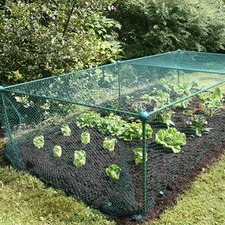 BRASSICA CAGE Light Duty 1.25m x 1.25m x  2.5m BCLD2