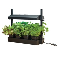 MICRO GROW LIGHT GARDEN, 1 x 11W light GLMC