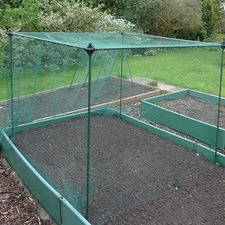 NO FRILLS FRUIT AND VEG CAGE, Butterfly Mesh H0.65m x L1.2m x W1.2m NFCY1