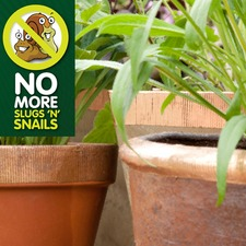 NO MORE SLUGS 'N' SNAILS Flexi Copper Tape SLNO