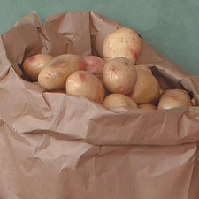 POTATO SACKS Paper, pack 5 PSAC