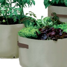 VEGETABLE PATIO PLANTERS, pack 3 PTVE