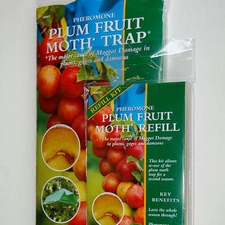 PLUM FRUIT MOTH TRAP PFMT