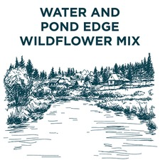 WILD FLOWER MIX Pond Edge Flowers (non organic) WIPM