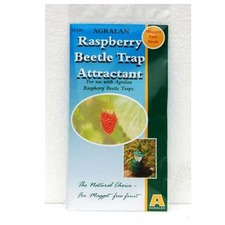 RASPBERRY BEETLE TRAP REFILL RBER