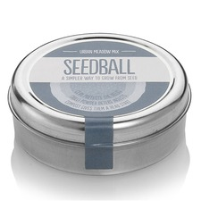 SEEDBALL Urban Meadow (non organic) SBUM