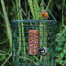 SQUIRREL RESISTANT NUT FEEDER KBSN