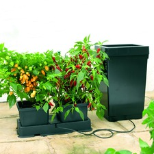 Easy 2 Grow Irrigation Kit - Extension Kit - Black