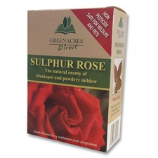 SULPHUR ROSE, 250g pack WETR