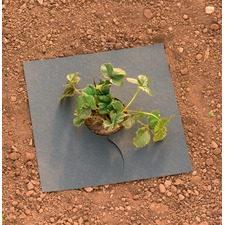 Mulch Mats - Pack of 10