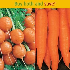 EARLY CARROTS SAVER PACKAGE SV008