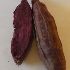 SWEET POTATO Molokai Purple  5 slips (non organic) PNSP