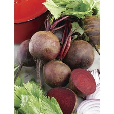 Beetroot Seeds - Boltardy Triple Pack