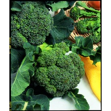 CALABRESE Green Sprouting (organic) CAGS