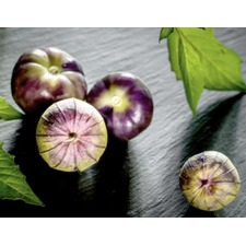 Tomatillo Plants - Purple (3) (Organic) 262249